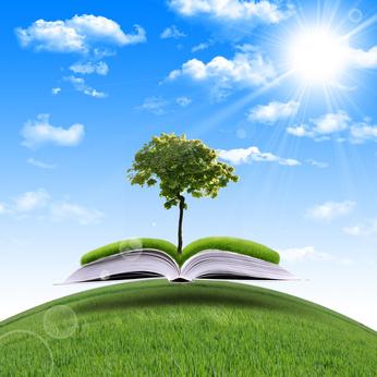 organic whey newsletter information